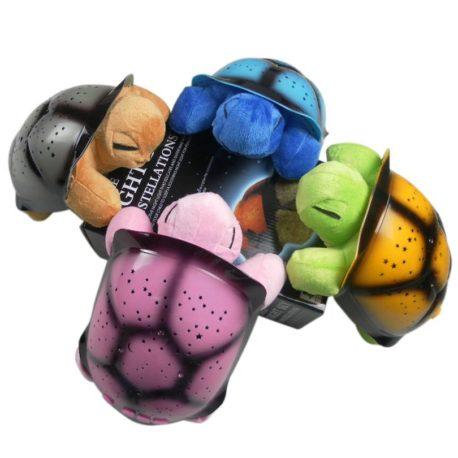 kornjace